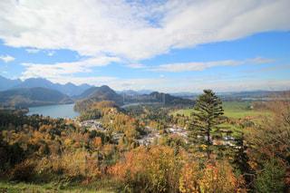 背景の山と木の写真・画像素材[893036]