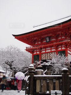 冬,清水寺,雪,京都,赤,観光