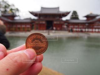 冬,京都,観光,平等院鳳凰堂,10円