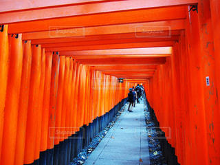 京都,赤,観光,千本鳥居,伏見稲荷