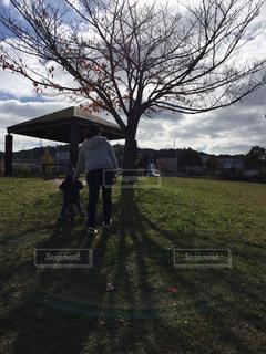 公園,自転車,子供,少年