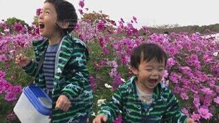子ども,自然,花,屋外,人物,人,笑顔,少年,兄弟,若い,はしゃぐ,手を繋ぐ,人間の顔