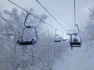 雪に覆われた車の写真・画像素材[933472]