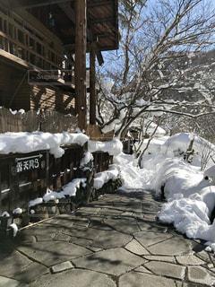 雪に覆われた建物の写真・画像素材[994988]