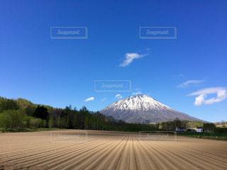 背景の山と木の写真・画像素材[1201129]