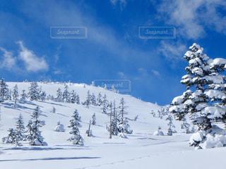 素晴らしい天気✨の写真・画像素材[1736840]