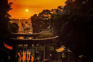 秋,夕暮れ,旅,九州,福岡