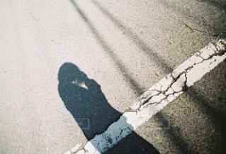 通りの眺めの写真・画像素材[2433334]