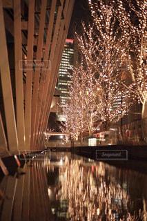 橋,水面,反射,光,樹木,イルミネーション,ライトアップ,照明,明かり,アンバサダー,グランフロント大阪,シャンパンゴールド