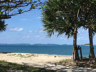 海 沖縄 風景