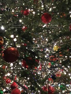 クリスマスの写真・画像素材[899896]