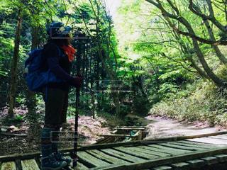 登山にての写真・画像素材[1158236]