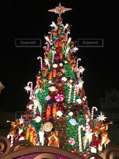 クリスマスツリーの写真・画像素材[1682381]