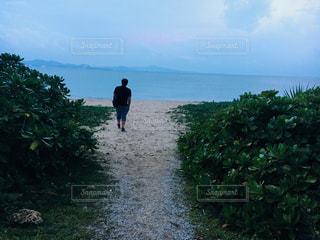 男性,自然,風景,海,空,ビーチ,後ろ姿,水面,海岸,人物,人