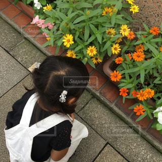 パン屋さんの前の花壇に夢中な女の子の写真・画像素材[898025]