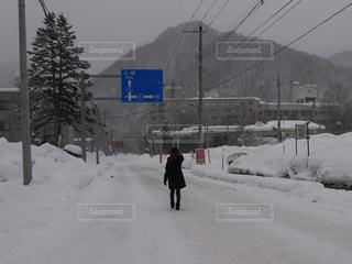 女性,自然,風景,冬,雪,屋外,白,後ろ姿,背中,人,冷