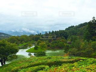 自然豊かな京都の庭園 - No.907175