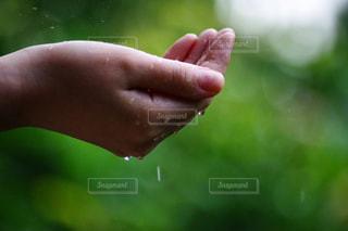 雨を受け取る手の写真・画像素材[2180360]