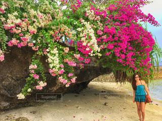 植物にピンクの花の女性の写真・画像素材[898820]