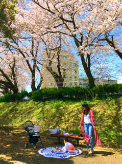 春,桜,お花見,春コーデ