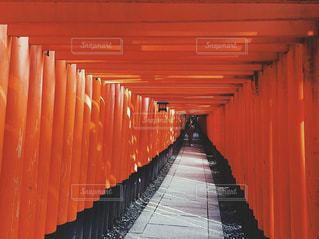 大きなオレンジ色の傘の写真・画像素材[908436]