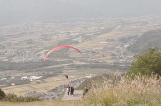草で覆われた丘の上の凧の飛行の人々 のグループの写真・画像素材[916925]