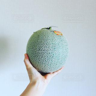 果物を持っている手の写真・画像素材[1205518]