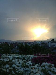 夕日,京都,太陽,夕焼け,反射,光,観光,逆光,高台寺,夕陽,高台