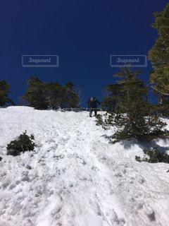 雪に覆われた斜面をスキーに乗る男の写真・画像素材[1016159]