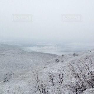 白,雪山,ホワイト,群馬県,鍋割山
