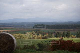 背景の山のフィールドの写真・画像素材[900983]