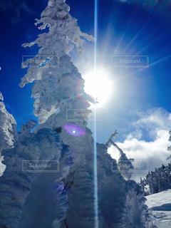 屋外,太陽,白,青,キラキラ,樹氷,志賀高原,PassMe