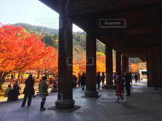 南禅寺の写真・画像素材[912204]