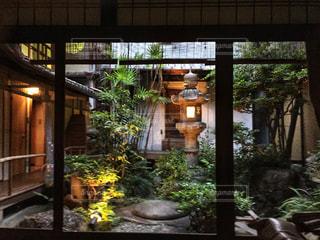 部屋から見える中庭の写真・画像素材[912218]