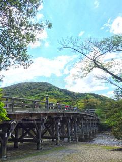 水の体の上の橋の写真・画像素材[920997]
