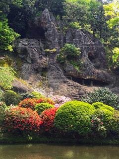 森の中の大きな滝の写真・画像素材[927104]