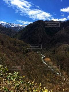 背景の山と木の写真・画像素材[927109]