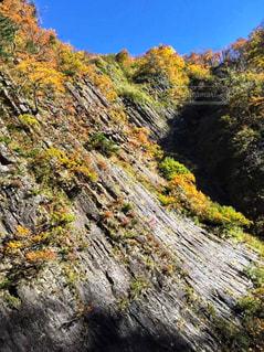 森の中の滝の写真・画像素材[942274]