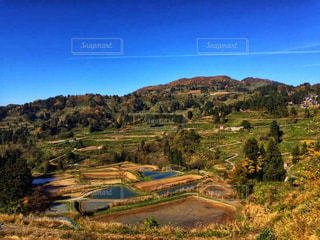 近くの丘の中腹のアップの写真・画像素材[942279]