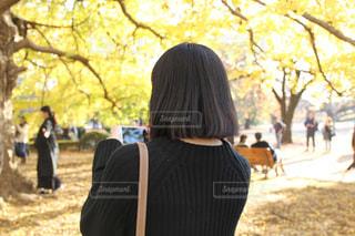 自然,公園,秋,紅葉,屋外,綺麗,後ろ姿,黄色,季節,人物,背中,人,イチョウ,新宿,思い出,友達,ニット,新宿御苑,インスタ映え