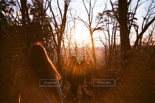 女性,自然,冬,屋外,太陽,朝日,後ろ姿,山,登山,人物,背中,人,お正月,友達,初日の出,フィルムカメラ,年始,山登り,年末年始