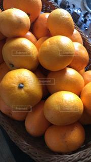 自然,鮮やか,みかん 愛媛 オレンジ フルーツ