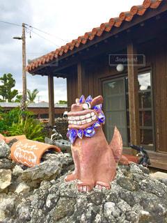 夏,屋外,南国,海岸,沖縄,古民家,レジャー,竹富島,シーサー,琉球,石垣,赤い屋根