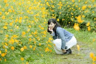 昭和記念公園の写真・画像素材[1514869]