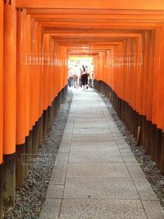 屋外,京都,赤,綺麗,伏見稲荷