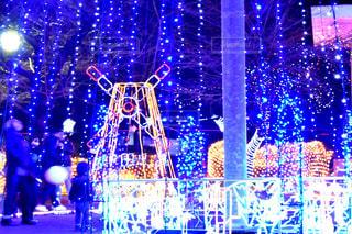 伊勢崎市イルミネーションの写真・画像素材[934040]