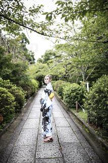 空,秋,京都,樹木,ポートレート,文化