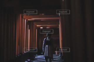 秋,京都,光,観光,月,伏見稲荷大社,ポートレート,文化