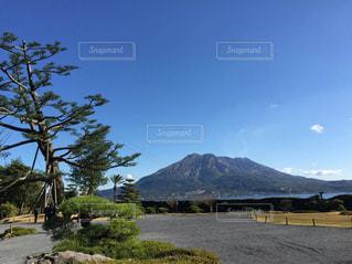桜島風景の写真・画像素材[1014928]