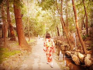 自然,京都,緑,後ろ姿,庭園,着物,日本,日本庭園,和服,平安神宮,和